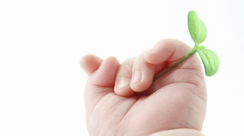 産後ケアーコース/赤ちゃんの手です