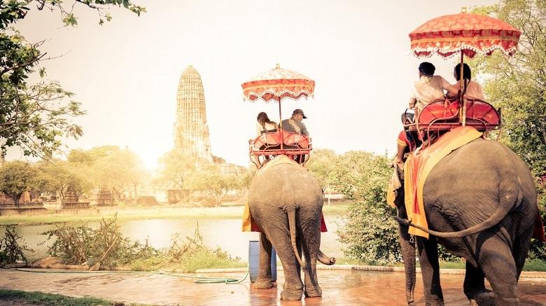2頭の象へ乗って歩く景色/タイ